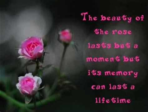 funny quotes  flowers quotesgram