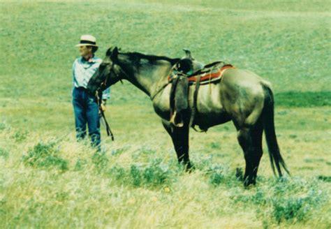 human horse bond take horses mare veterinarian bonds