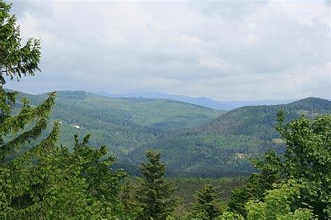 mont sainte odile travel and tourism attractions and sightseeing and reviews near mont