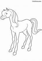 HD wallpapers horseland coloring pages sunburst 3android8wall.gq