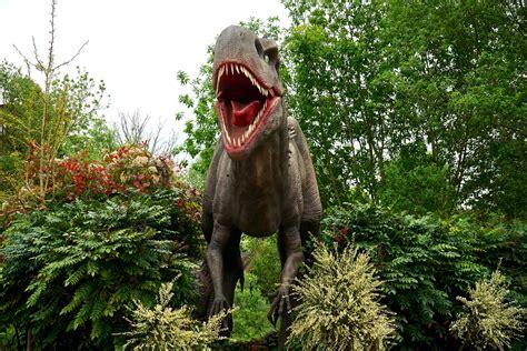 stock photo  dinosaur