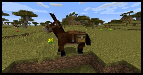 minecraft horses guide horse breed donkeys tame complete mules faster