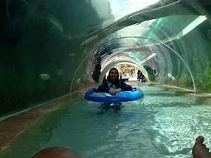 adventure river - Picture of Adventure Cove Waterpark ...