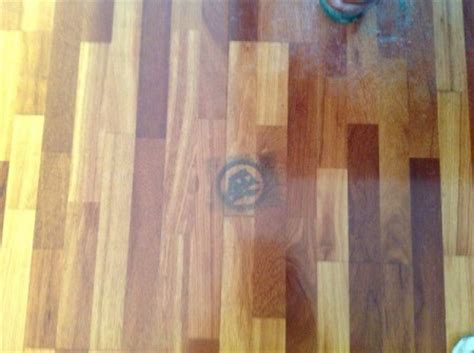 Urine Stains On Hardwood Floors Removal by Removing Pet Urine Stains From Hardwood Floors Thriftyfun