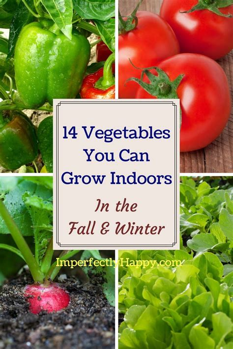vegetables   grow indoors   fall winter