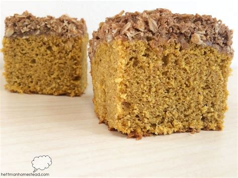 This site is for my books. Pumpkin Coffee Cake | Pumpkin coffee cakes, Coffee cake, Food