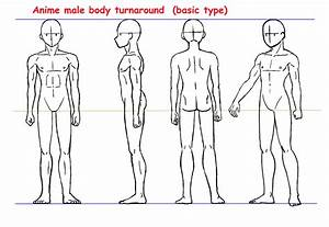 Anime male body turnaround by Yumezaka on DeviantArt