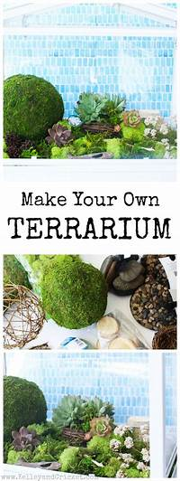 make your own terrarium 17 Best images about Kelley and Cricket DIY on Pinterest ...