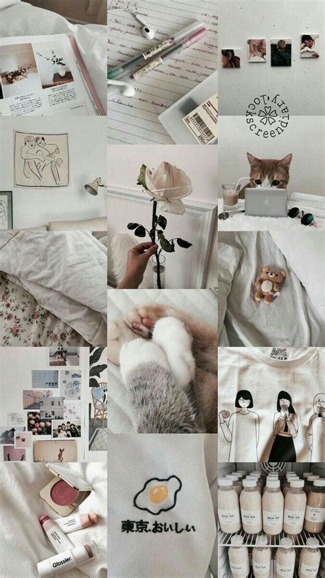 pin by abc dap on lookscreen kucing trendy wallpaper