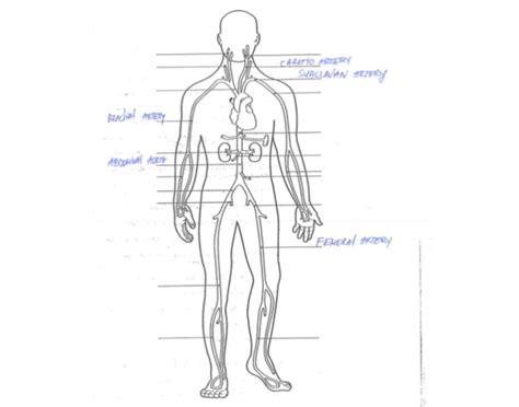 label arteries purposegames