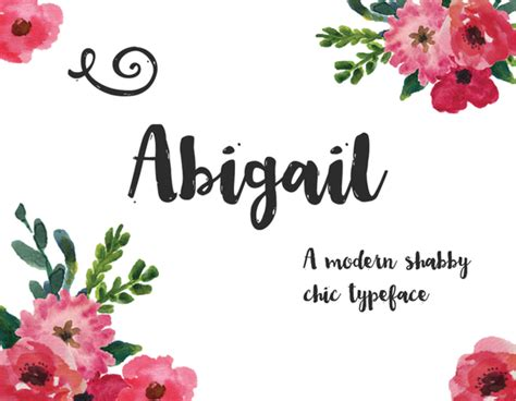 abigail script fonts  creative market