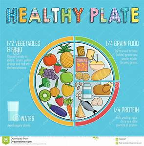 Healthy Plate Nutrition Proportions Stock Vector