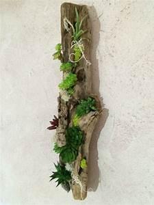 Tableau Végétal Mural : 17 best ideas about cadre succulente on pinterest cache ~ Premium-room.com Idées de Décoration