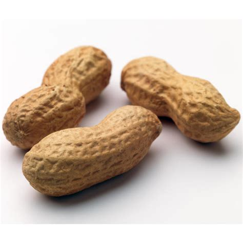 how to roast peanuts in the shell roasted peanuts in shell bulk peanuts bulk nuts seeds oh nuts 174