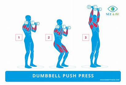 Press Push Dumbbell Exercise Muscle Groups Workout