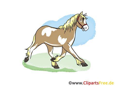 www clipart pferd clipart kostenlos