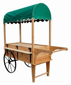 Peddlers Cart With Canopy Wooden Display Cart