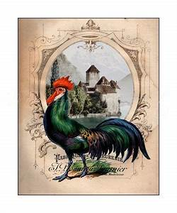 French Chateau Rooster II, Art Print, Rooster Kitchen ...