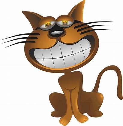 Brown Caricature Cartoon Cat Pixabay Dentures
