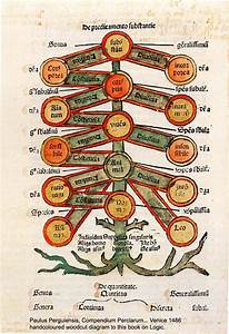 The Family Tree And Other Metaphors