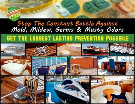 Boat Mildew Prevention by Flipsnack Marine Mold Mildew Removal By Aaron