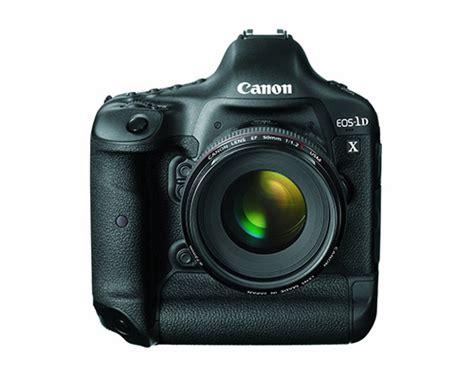 camera  wildlife photography