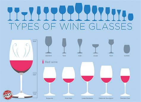 Types Of Wine Glasses (infographic) For Beginners