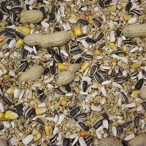 Graines De Tournesol Pour Oiseaux : m lange perroquet au kg graines oiseaux i c montant ~ Dailycaller-alerts.com Idées de Décoration