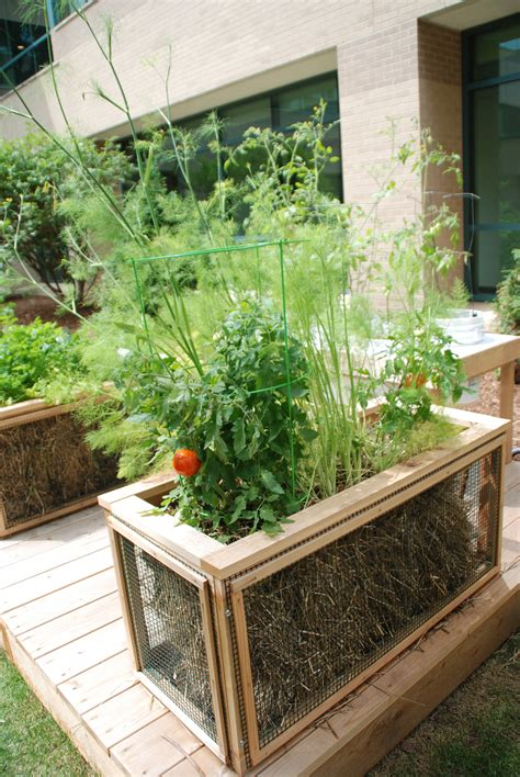 Where To Buy Straw Bales For Gardening by Garden Anywhere This Season With The Help Of Straw Bale