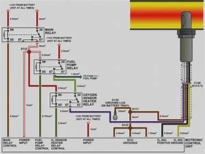 4 Wire O2 Sensor Diagram Crx