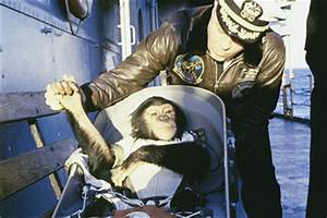 Space History Photo: Ham, The First Space Chimp