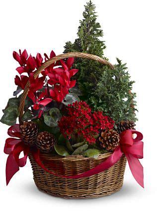 natal arranjo floral em cesto natalicio eu decoro