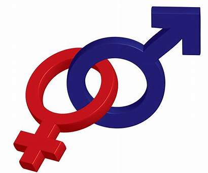 Both Sexes Symbol Male Female Lesson Another