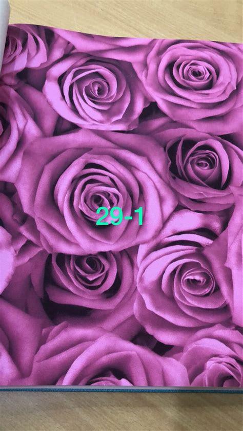 bagus  gambar bunga mawar keren  arka gambar