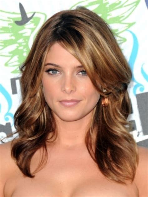 Brunettes Hair Colors by Brown Hair Lowlights Highlights 1 Design