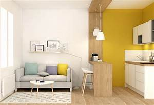 decoration amenagement renovation appartement renovation With lovely meuble pour studio petite surface 1 petite surface amenagement studio decoration lyon