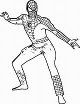 Coloring Muscle Spider Spiderman Chest Costume Adult Contemporary Printable Getcolorings Ultimate Getdrawings Cartoon Wecoloringpage sketch template