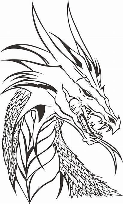 Dragon Drawing Drawings Cool Dragons Head Simple