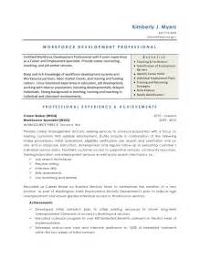 developing a personal resume workforce development resume
