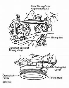 1995 Ford Escort Serpentine Belt Routing And Timing Belt Diagrams