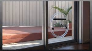 glass pet doors perth wa glass pet doors dog door for