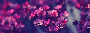 Facebook Flowers Covers - Facebook Covers for Facebook ...