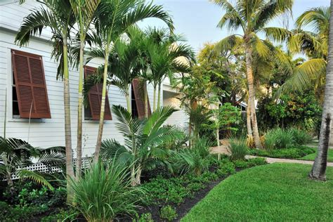 rocks for driveway tropical landscaping ideas landscape tropical with