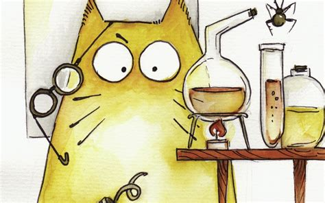 mad cat alist  cat alogue  storybird