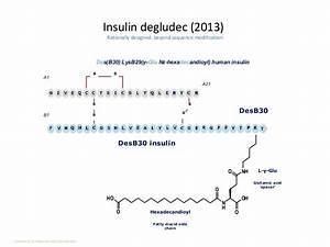 Basal Insulin Berechnen : basal insulin in t2dm ~ Themetempest.com Abrechnung