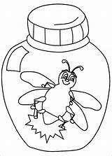 Bug Coloring Lightning Preschool Clipart Bugs Printable Pill Fireflies Worksheets Insects Firefly Insect Drawing Jar Animals Pennsylvania Bolt Firefly2 Template sketch template