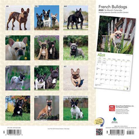 french bulldogs calendar