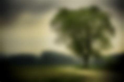 Blurry Nature Background  Wwwimgkidcom  The Image Kid