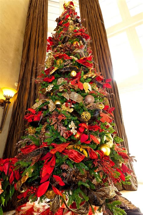 christmas tree show me decorating towering magestic tree