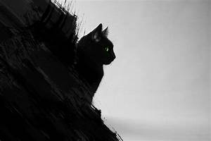 Black Cat Abstract by emanuel96 on DeviantArt